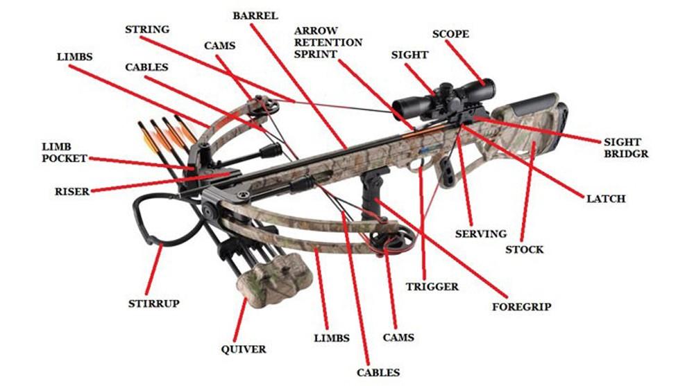 Anatomy-Of-A-Crossbow